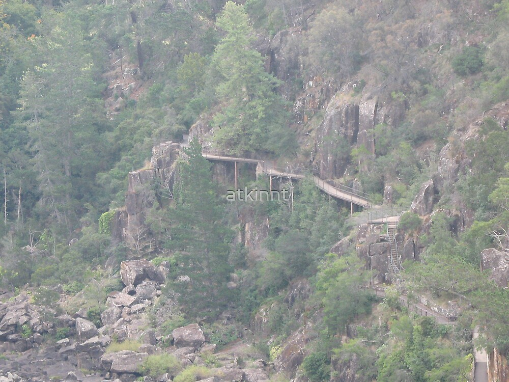 Cataract Gorge Tasmania Australia by atkinnt