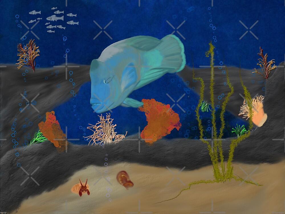 Humphead Wrasse by Sandra Chung