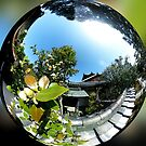 360 Temple in Kyoto by Michelle Dry