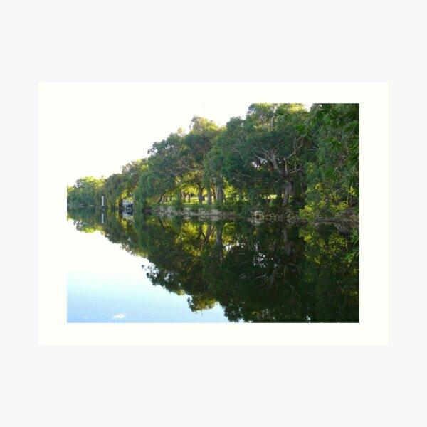 Lake McNess Art Print
