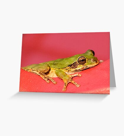 Green Frog Chilling Greeting Card