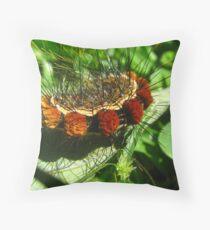 Fantastic Caterpillar Curled Up Throw Pillow