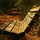 Trailhead Bench by Richard G Witham