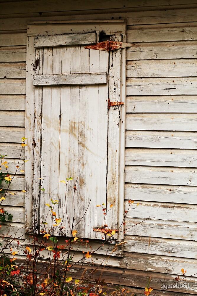 Door to the Past by ggwebb61