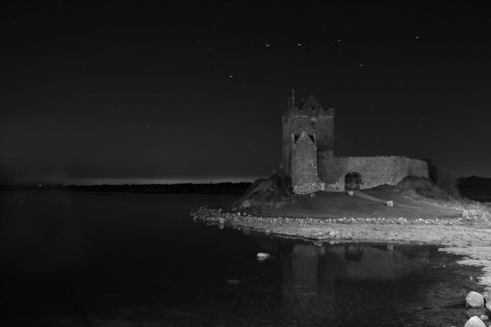 Dunguaire Castle  by John Quinn
