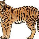 pretty orange tiger by andilynnf