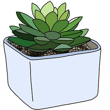 cute succulent in blue pot by andilynnf