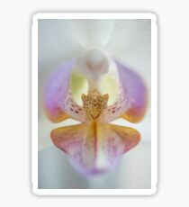 Center of the Orchid Sticker