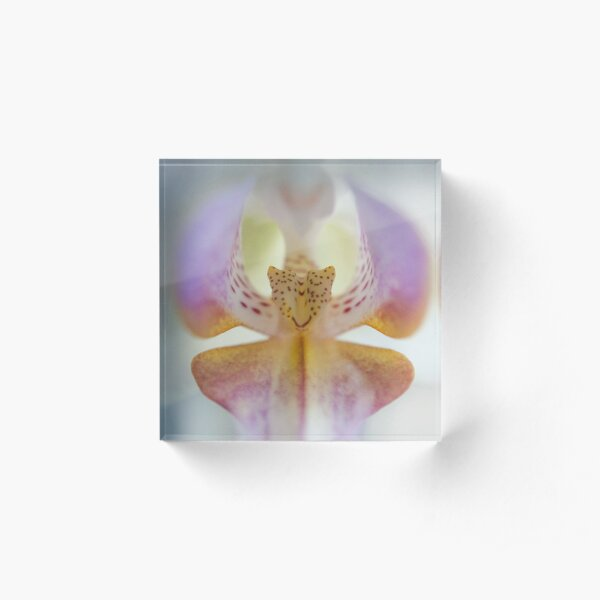 Center of the Orchid Acrylic Block