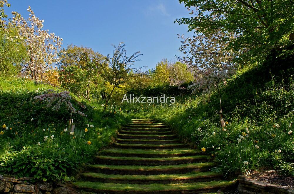 The Green Steps by Alixzandra