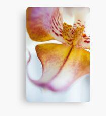 Orchid Petal Canvas Print