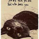 Mina the Cat by ReWin