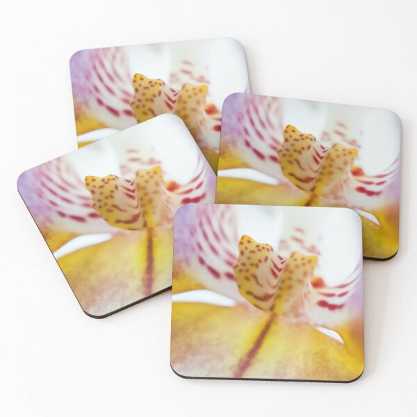 Spotted Orchid Coasters (Set of 4)