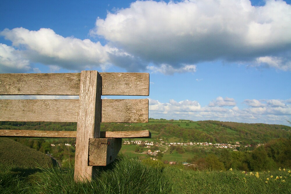 On Rodbrough Common by Jeff  Wilson