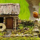 English country garden Robin   by Simon-dell