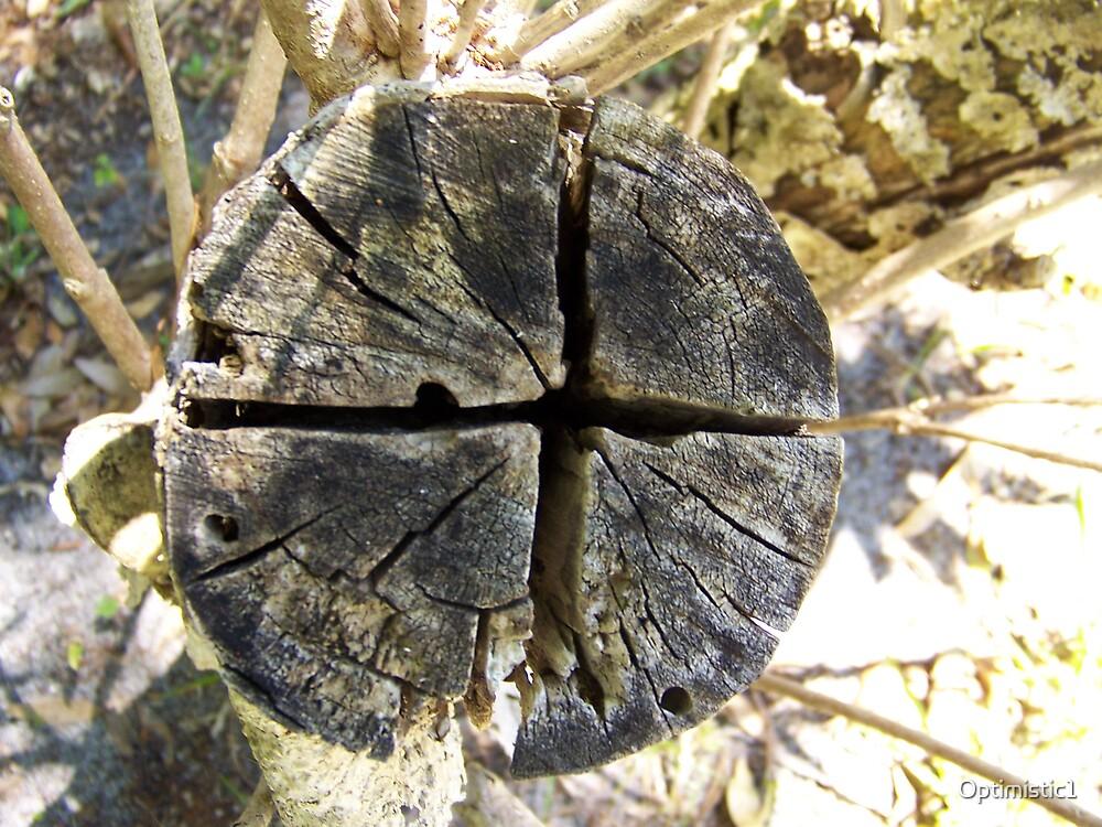 """Cross"" Stump by Optimistic1"