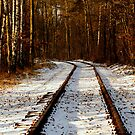 Forsaken old railway track by renifer