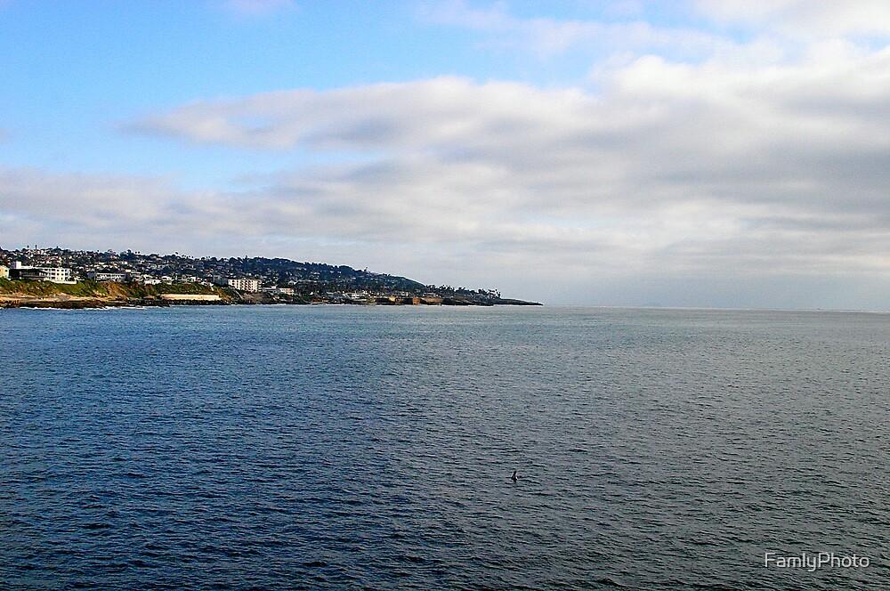 Ocean Landscape by FamlyPhoto