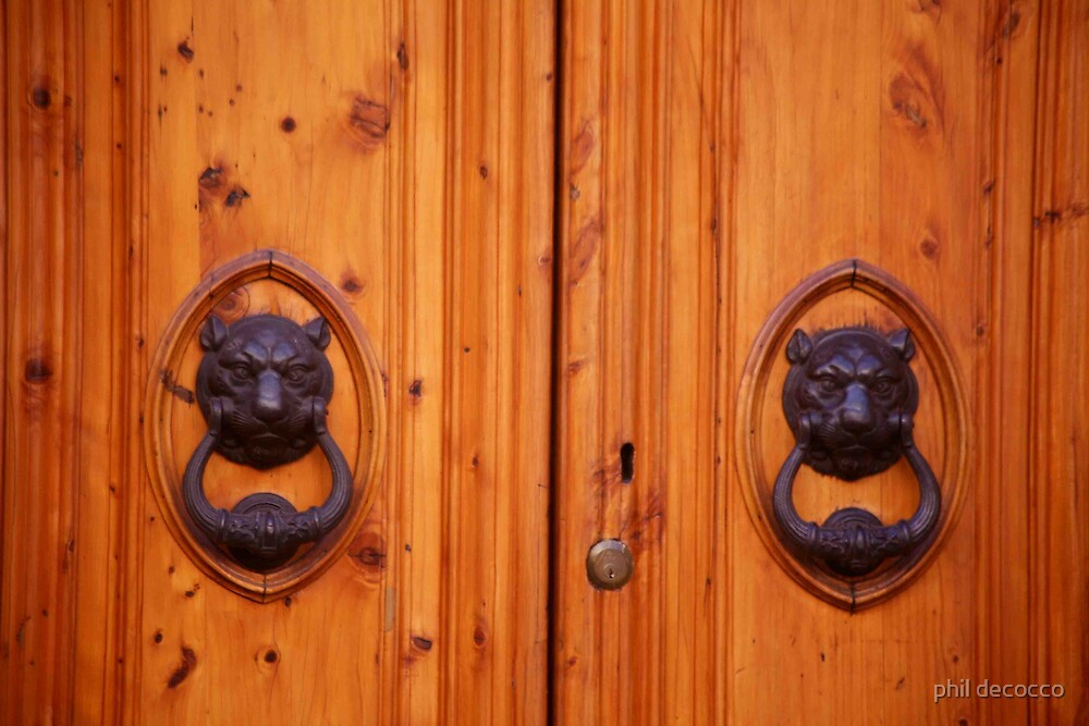 Lion Knockers by phil decocco