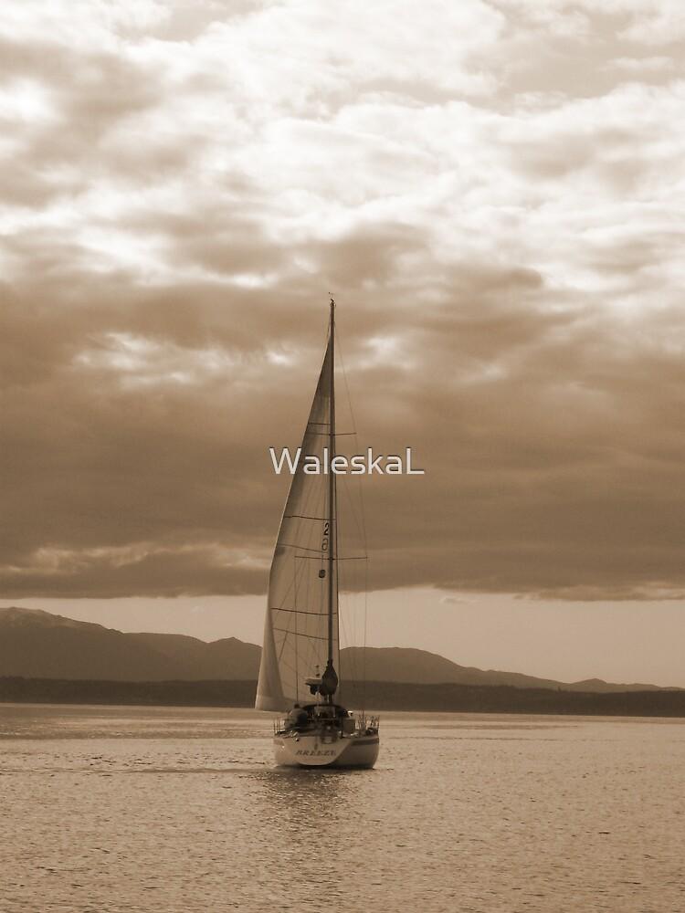 Untitled by WaleskaL