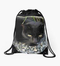Feline Delinquent Drawstring Bag