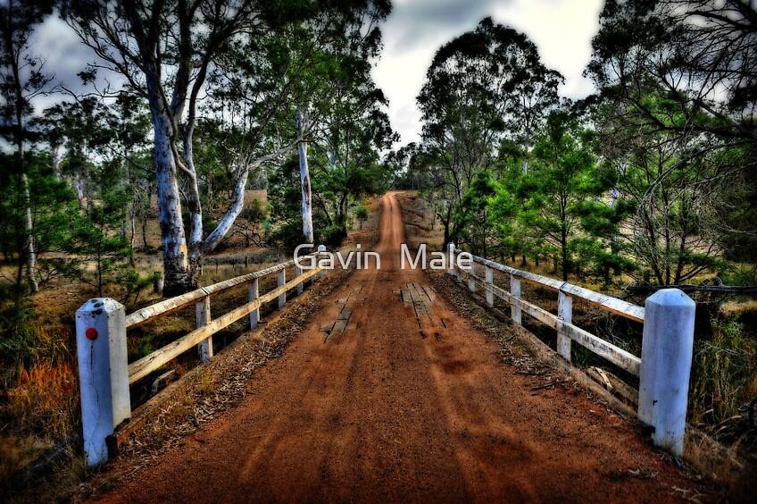Old Style Bridge by Gavin  Male