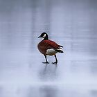 Lonely on ice by Masha-Gr