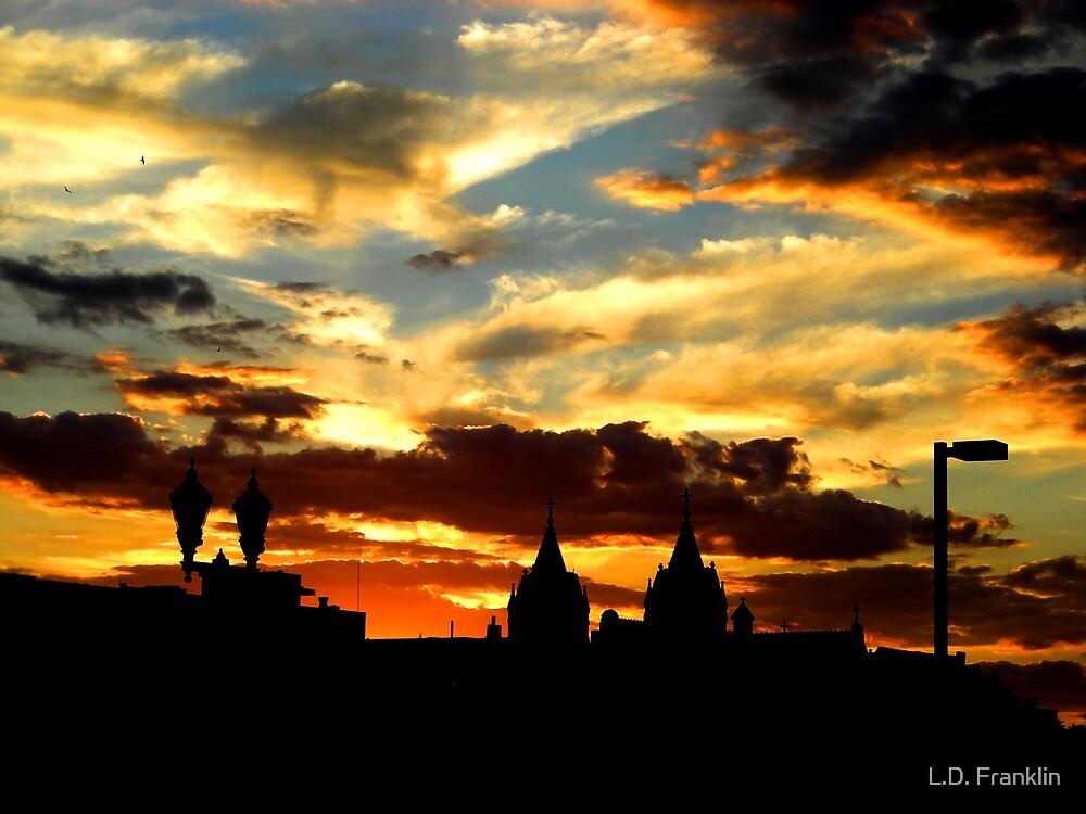Gorgeous Sunset by L.D. Franklin