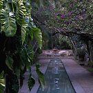 Fountain by Sally Sloley