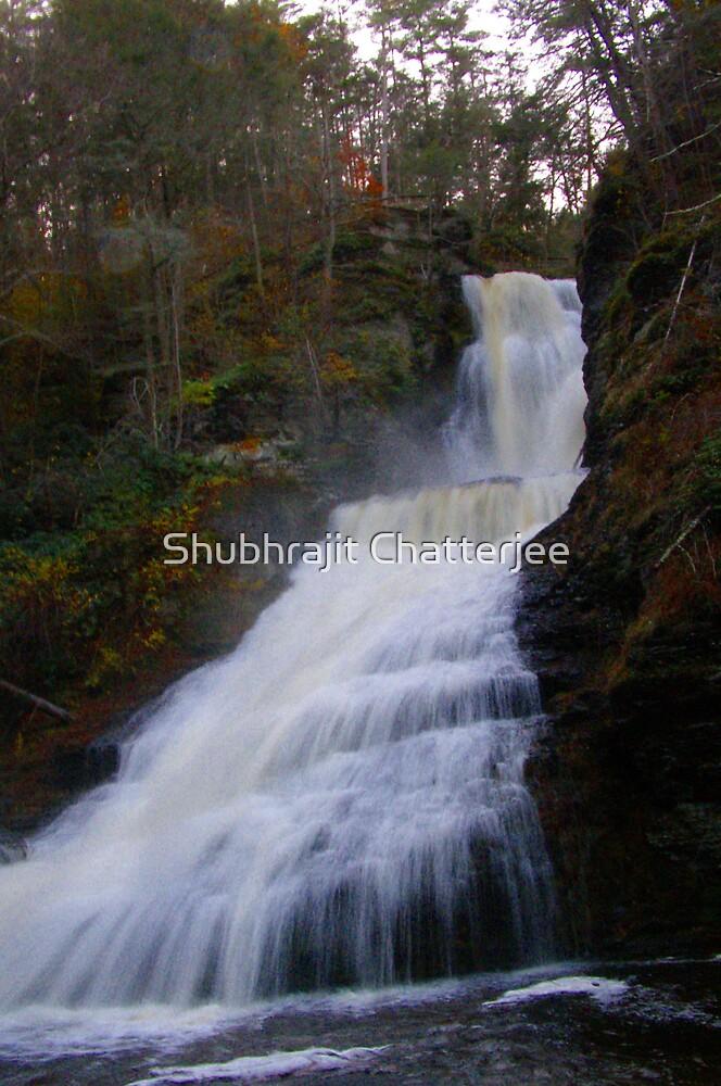 Dingman's falls by Shubhrajit Chatterjee