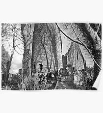 Dysert O Dea ruins (Clare) Poster
