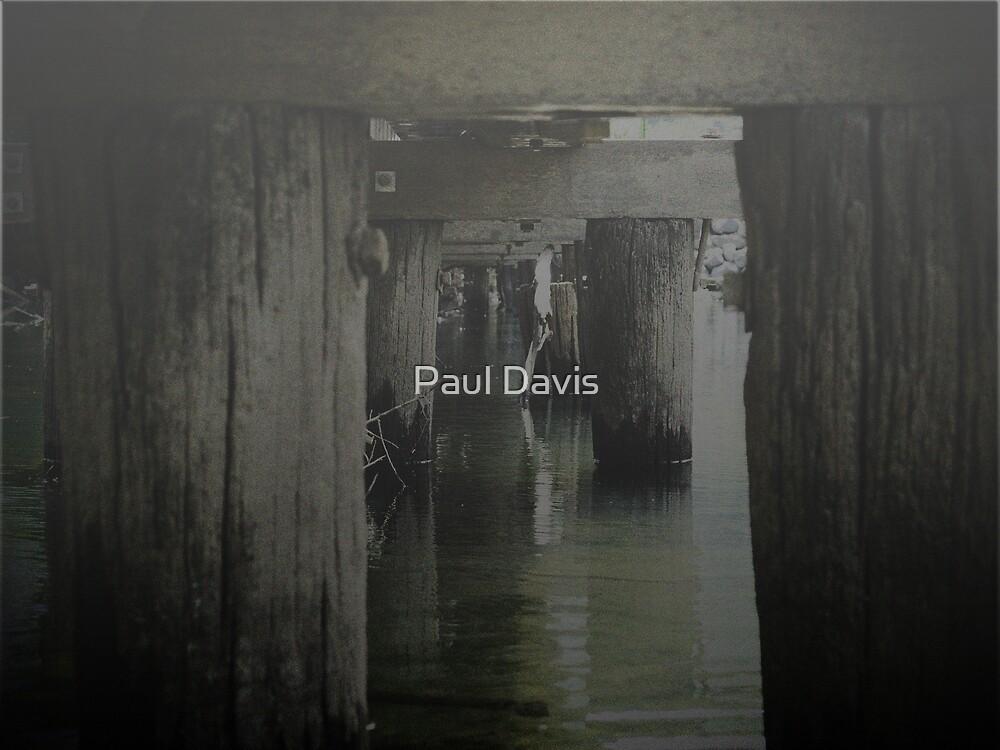 The Mist... by Paul Davis