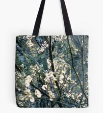 Salix Blossoms and Light Tote Bag