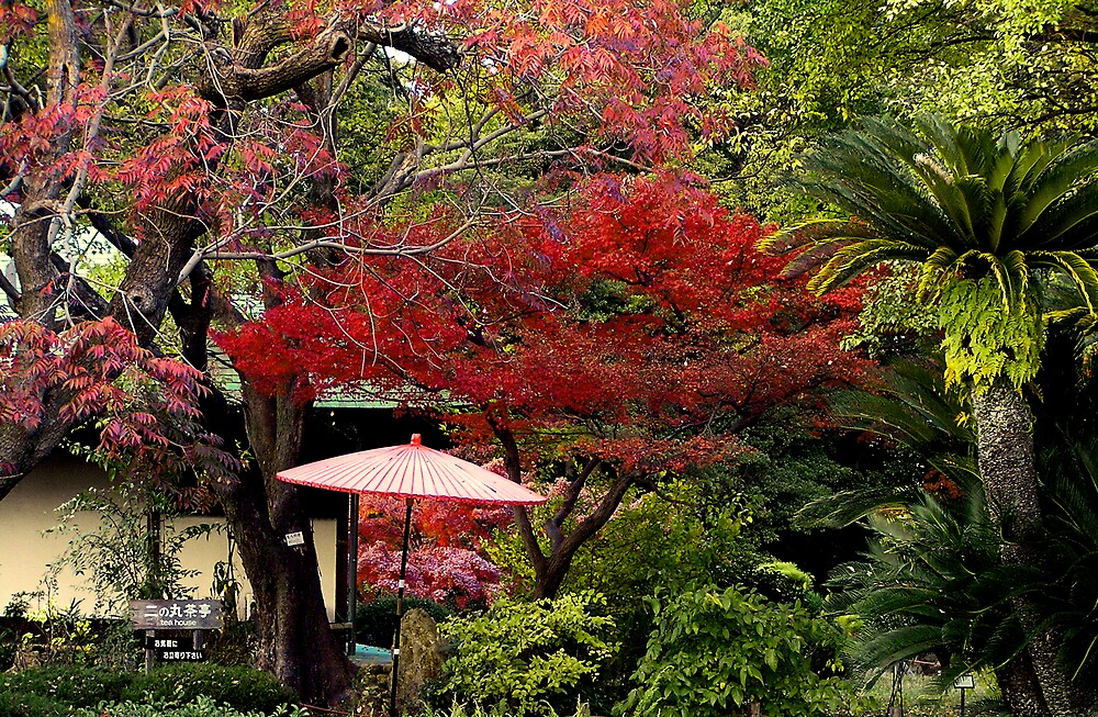 Nagoya Teahouse by Christopher Biggs