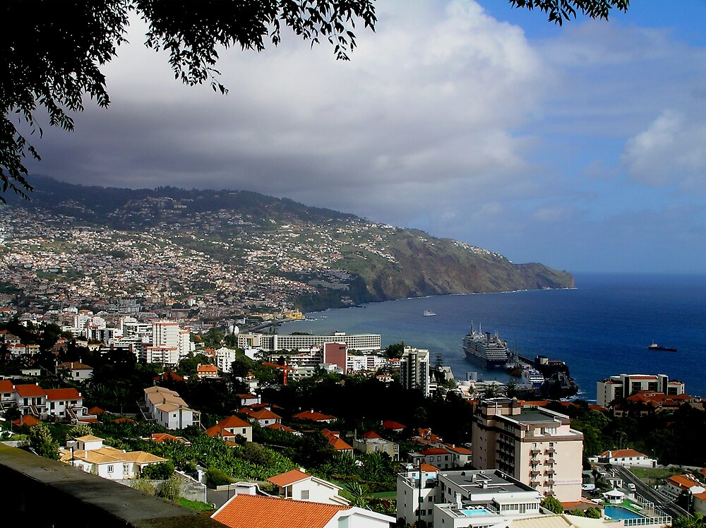Funchal, Madeira by Christopher Biggs