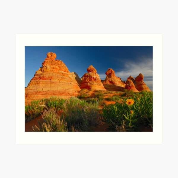South Coyote Buttes Art Print