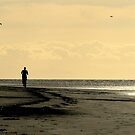 Coast Life by BrianBrown