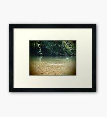 Skip - The Mulgrave River at Ross & Locke - Queensland - Australia Framed Print