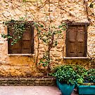 A Wall In Chania by Rae Tucker