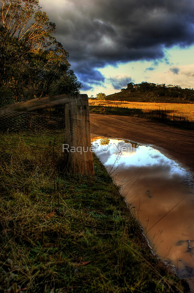 The Puddle by Raquel O'Neill