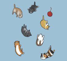 Kitten Rain