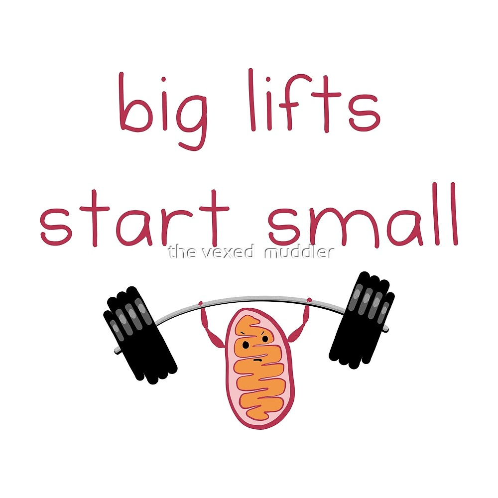 Big lifts start small by the vexed  muddler