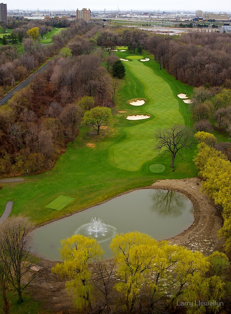My View.....~ Golf is in the forcast....End of April 09... by Larry Llewellyn