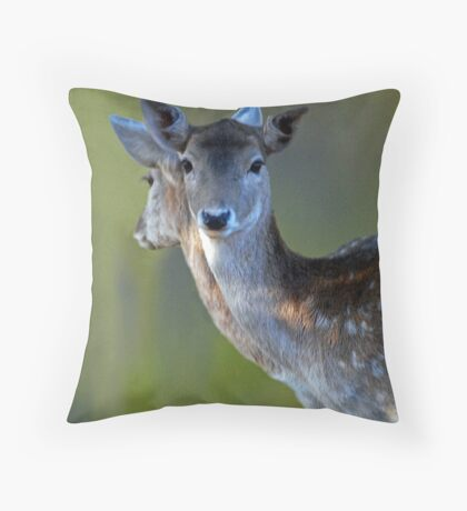 Don't look now, but someone's watching us Throw Pillow