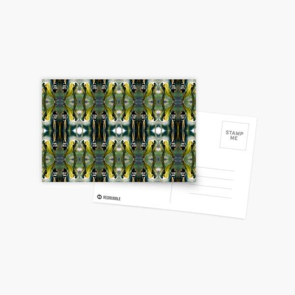 Corn Smut (Ustilago maydis) Postcard