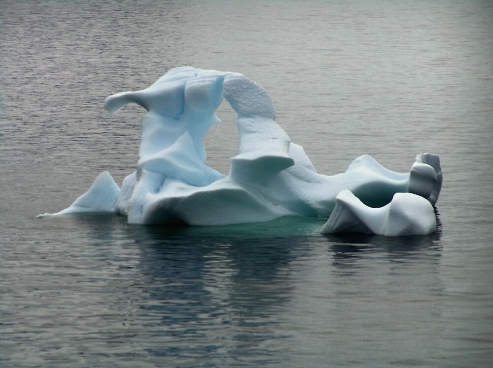 Iceberg, Paradise Harbour, Antarctica by Christopher Biggs