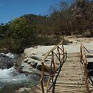 The Bridge by Allen Lucas