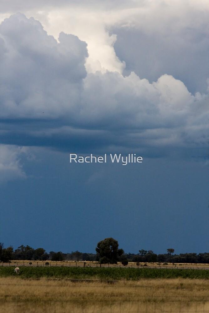Storm Brewing 2 by Rachel Wyllie