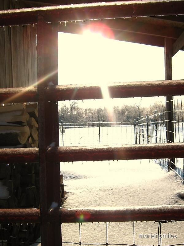 Winter Gate by moriahsmiles