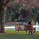 A Day At The Park by CarolM
